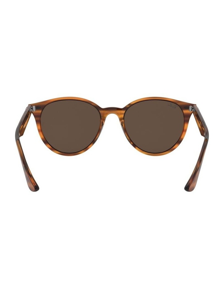 Brown Round Sunglasses 0RB4305 1524340007 image 7