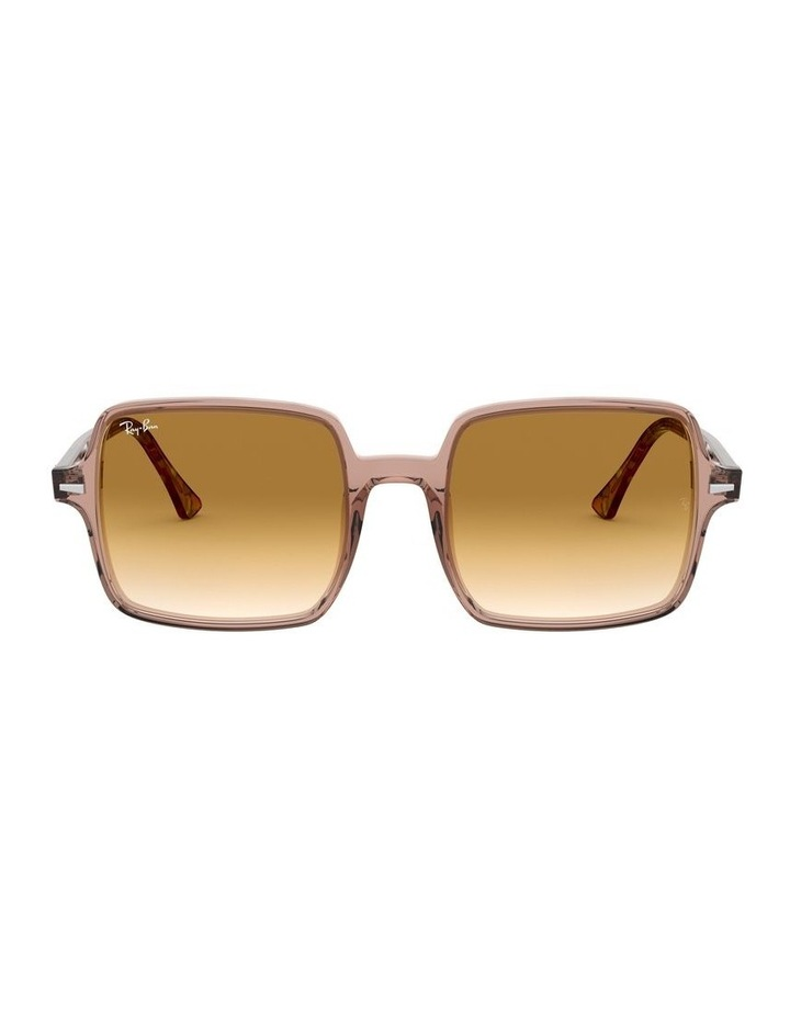0RB1973 1526222001 Sunglasses image 1