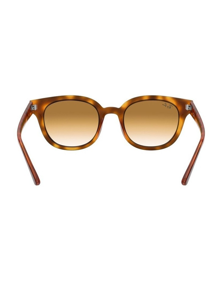 Brown Square Sunglasses 0RB4324 1526228009 image 7