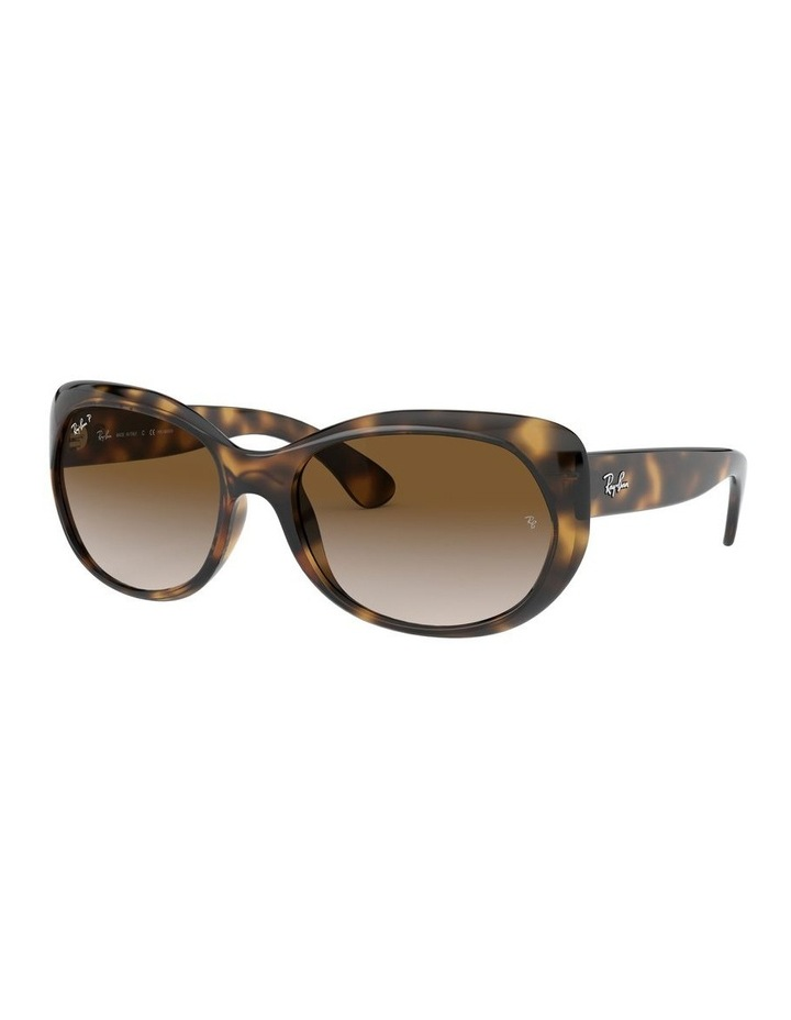 Brown Butterfly Sunglasses 0RB4325 1526229002 image 1