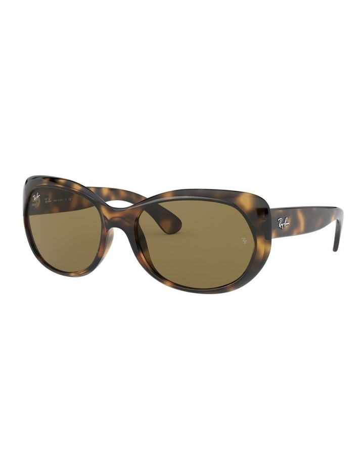 Brown Butterfly Sunglasses 0RB4325 1526229007 image 1