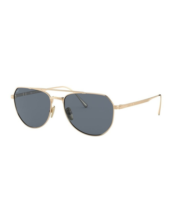 0PO5003ST 1529389001 Sunglasses image 2