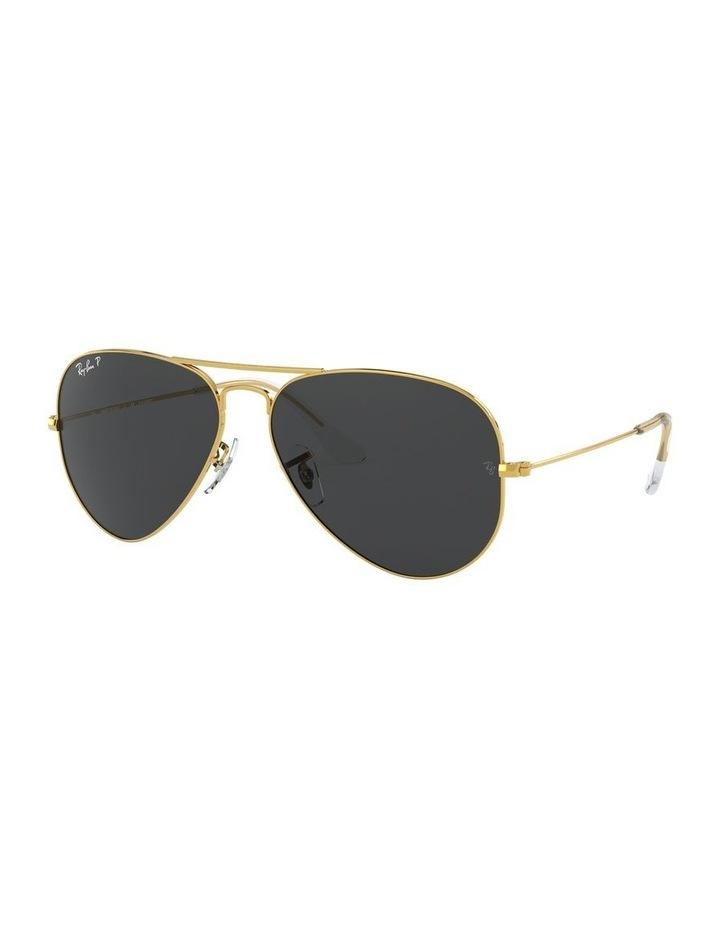 0RB3025 1062739158 Polarised Sunglasses image 2