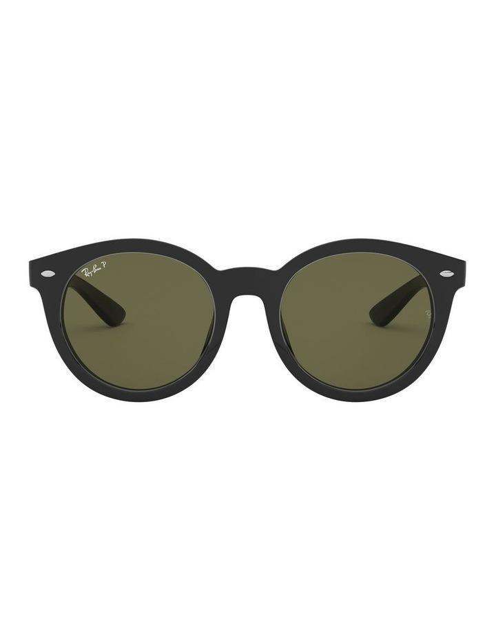 0RB4261D 1516910004 Polarised Sunglasses image 2