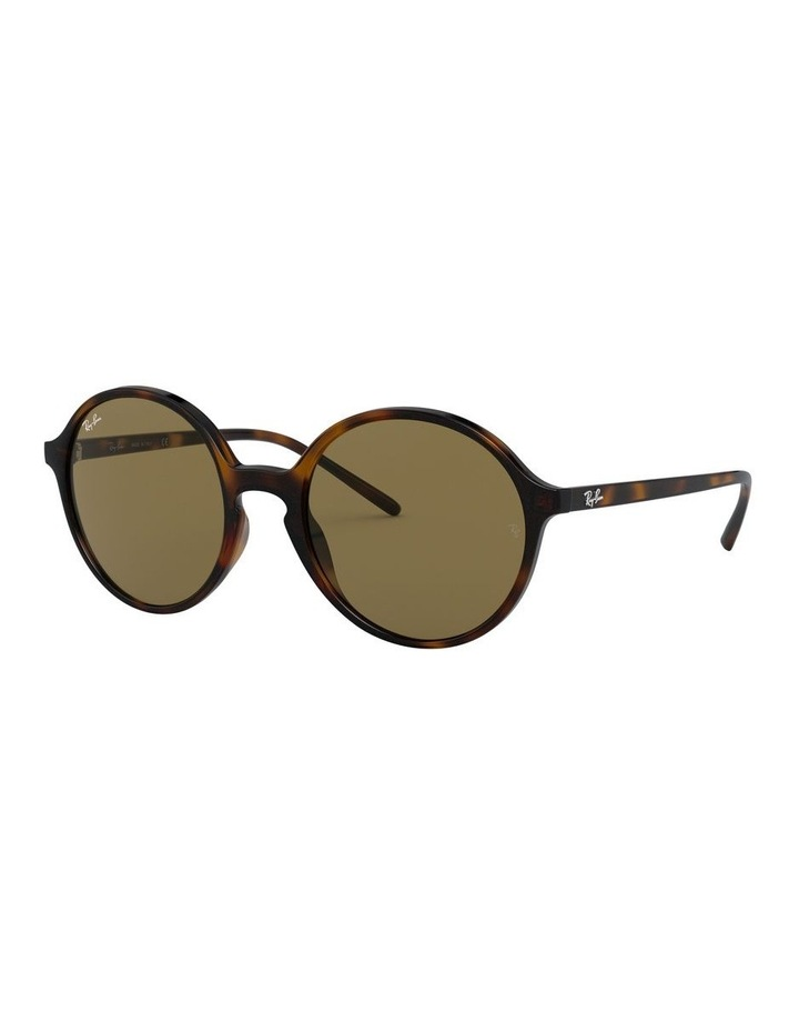 Brown Round Sunglasses 0RB4304 1524239002 image 1