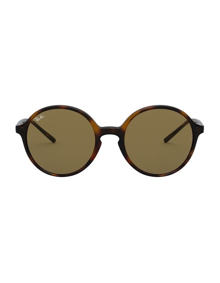 Brown Round Sunglasses 0RB4304 1524239002 image 2