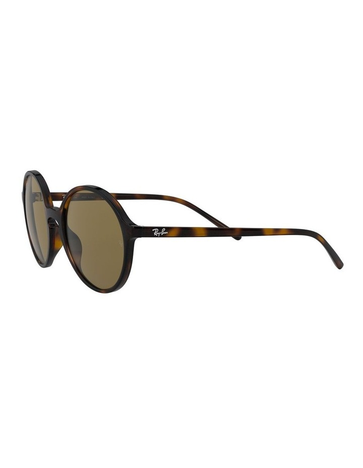 Brown Round Sunglasses 0RB4304 1524239002 image 3