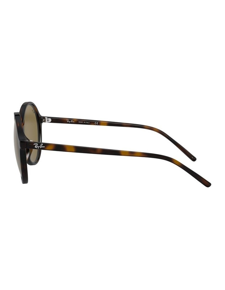 Brown Round Sunglasses 0RB4304 1524239002 image 4
