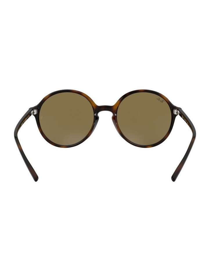 Brown Round Sunglasses 0RB4304 1524239002 image 7