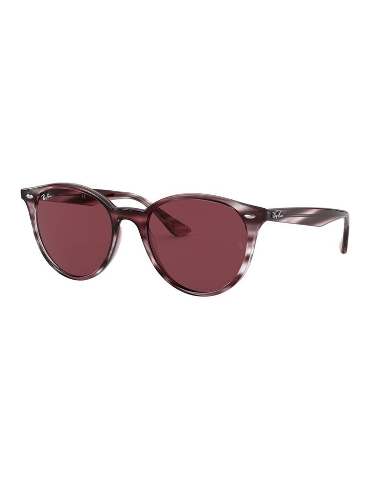 0RB4305 1524340009 Sunglasses image 2