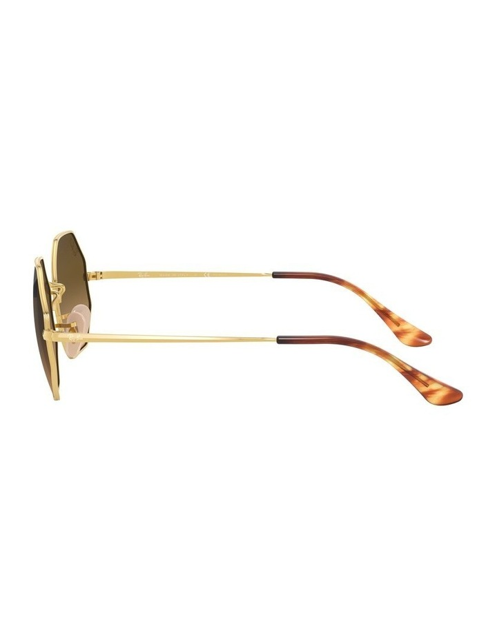0RB1972 Octagon 1529238009 Polarised Sunglasses image 4