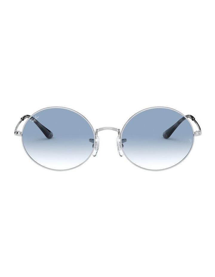 0RB1970 Oval 1529297001 Sunglasses image 2