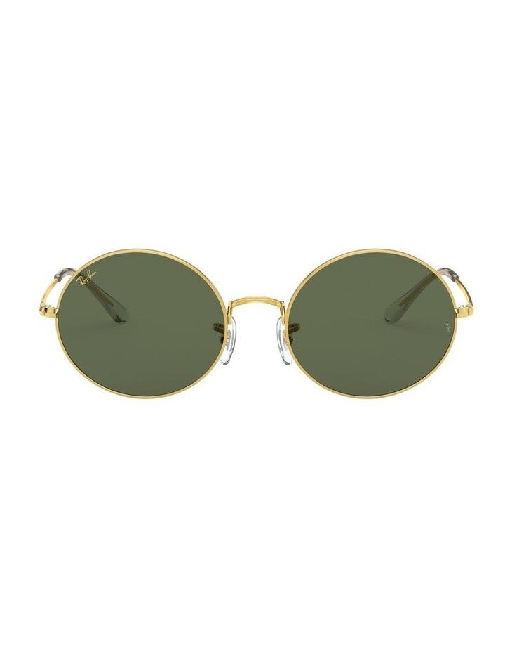 0RB1970 Oval 1529297006 Sunglasses image 2