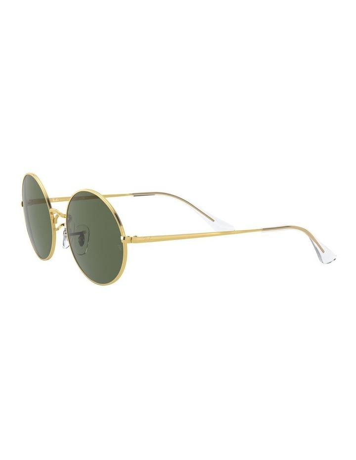 0RB1970 Oval 1529297006 Sunglasses image 3