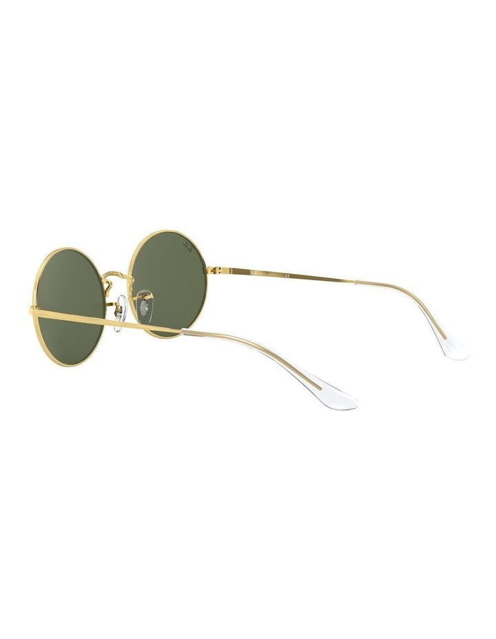 0RB1970 Oval 1529297006 Sunglasses image 5