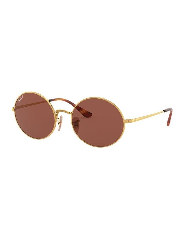 0RB1970 Oval 1529297008 Polarised Sunglasses image 1