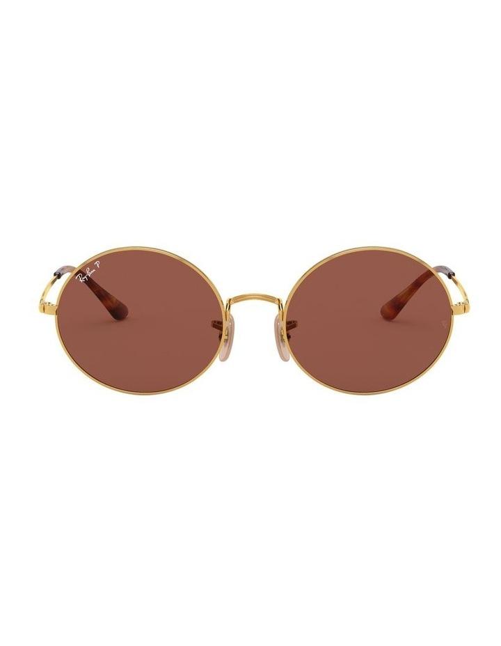 0RB1970 Oval 1529297008 Polarised Sunglasses image 2