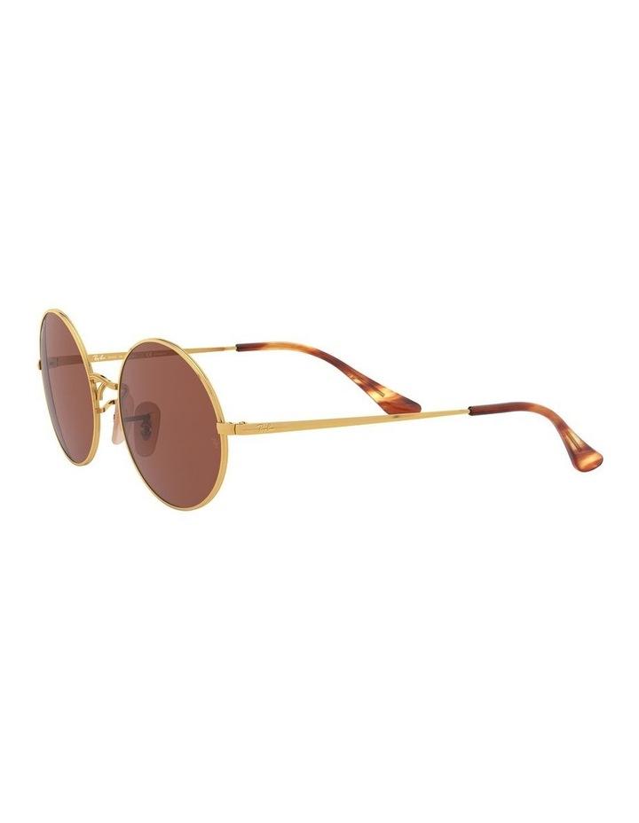 0RB1970 Oval 1529297008 Polarised Sunglasses image 3