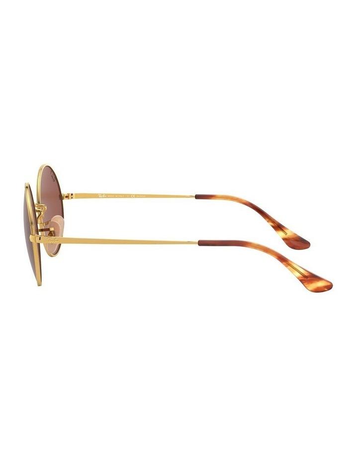 0RB1970 Oval 1529297008 Polarised Sunglasses image 4