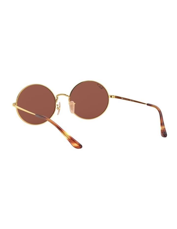 0RB1970 Oval 1529297008 Polarised Sunglasses image 6