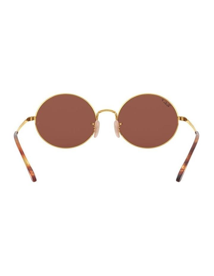 0RB1970 Oval 1529297008 Polarised Sunglasses image 7