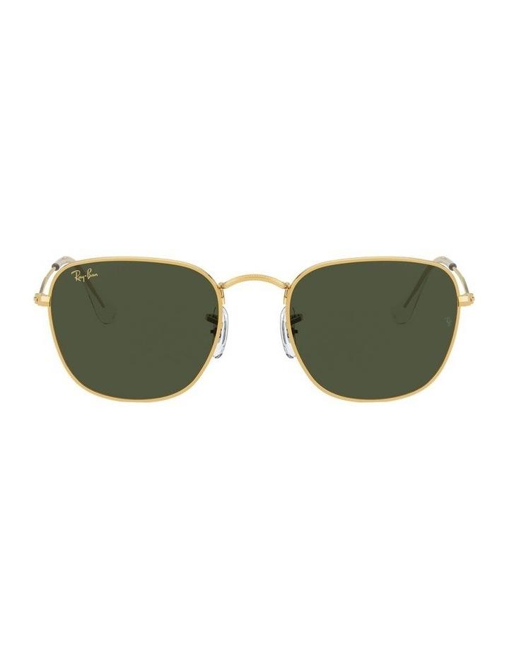 Frank Green Square Sunglasses 0RB3857 1529430001 image 2