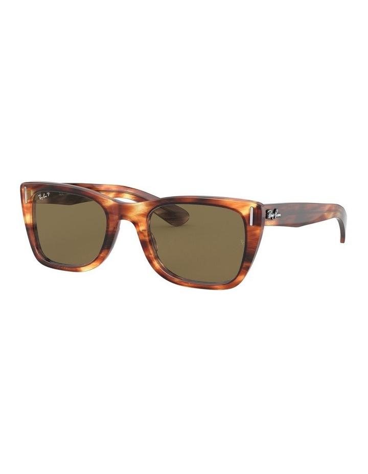 0RB2248 1531000006 Polarised Sunglasses image 2