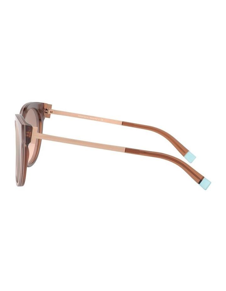 Round Sunglasses 0TF4168 1529909003 image 4