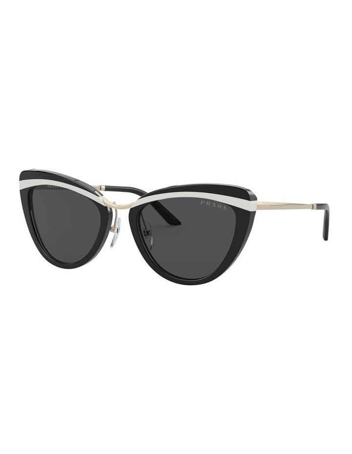Black Cat Eye Sunglasses 0PR 25XS 1532211001 image 1