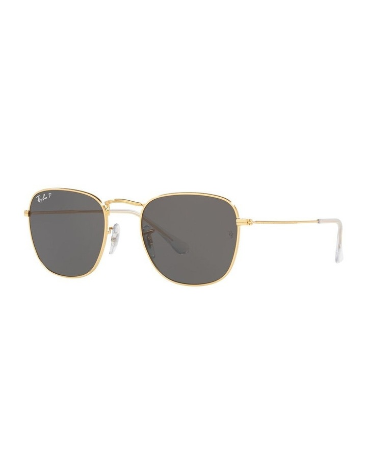 0RB3857 Frank 1529430013 Polarised Sunglasses image 1