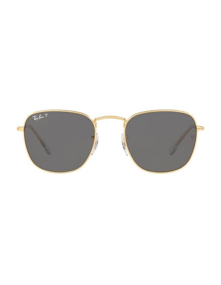 0RB3857 Frank 1529430013 Polarised Sunglasses image 2