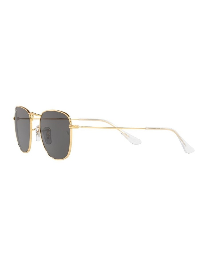 0RB3857 Frank 1529430013 Polarised Sunglasses image 3