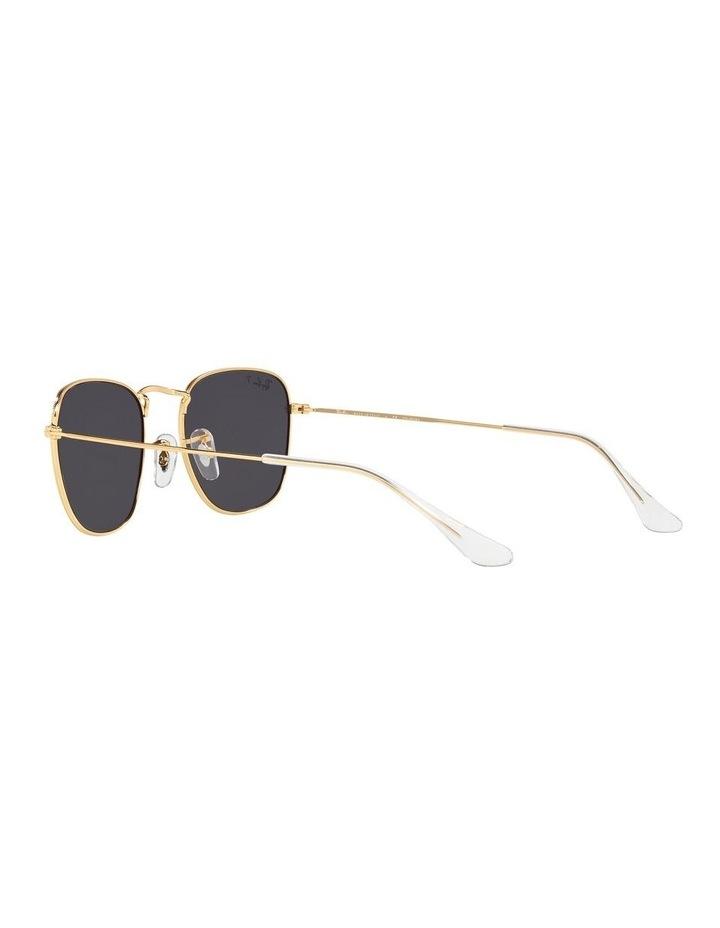 0RB3857 Frank 1529430013 Polarised Sunglasses image 5