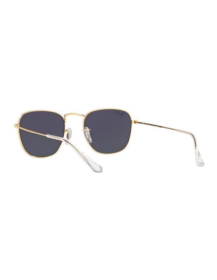 0RB3857 Frank 1529430013 Polarised Sunglasses image 6