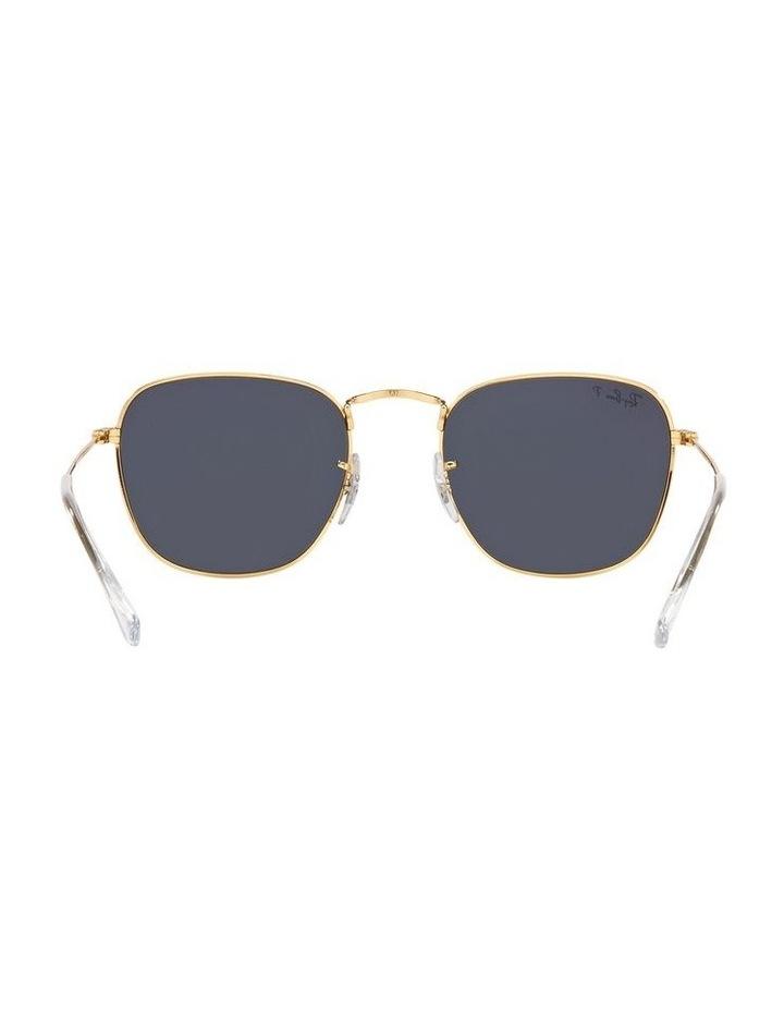 0RB3857 Frank 1529430013 Polarised Sunglasses image 7