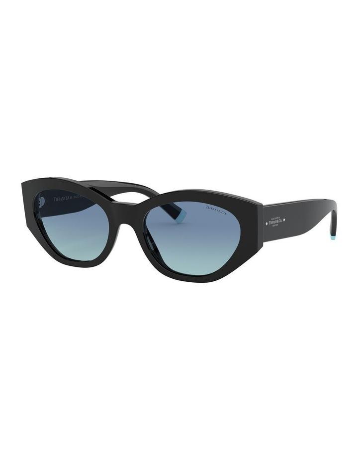 Black Oval Sunglasses 0TF4172 1531172006 image 1