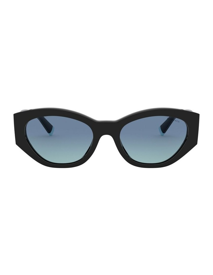 Black Oval Sunglasses 0TF4172 1531172006 image 2