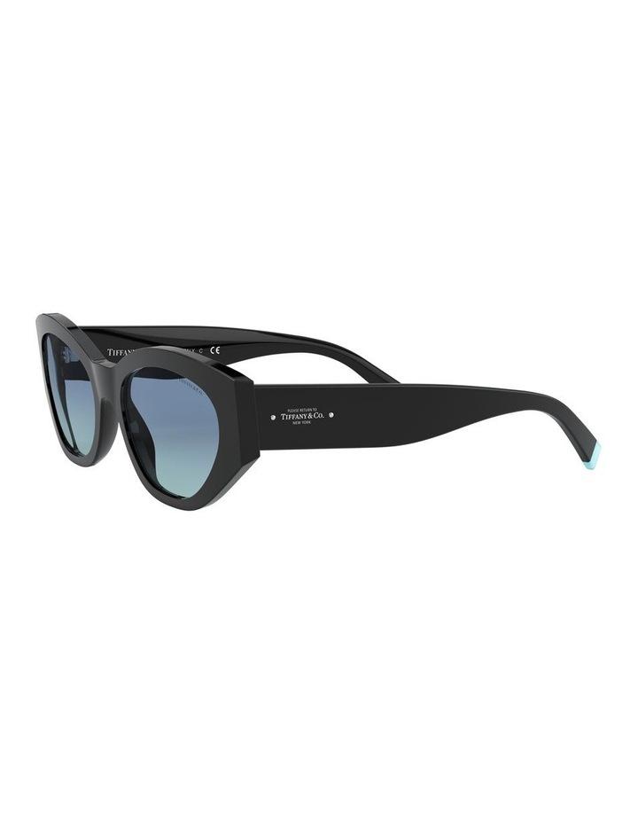 Black Oval Sunglasses 0TF4172 1531172006 image 3