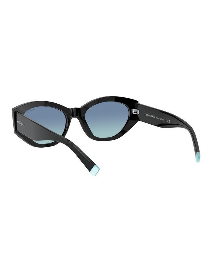 Black Oval Sunglasses 0TF4172 1531172006 image 6