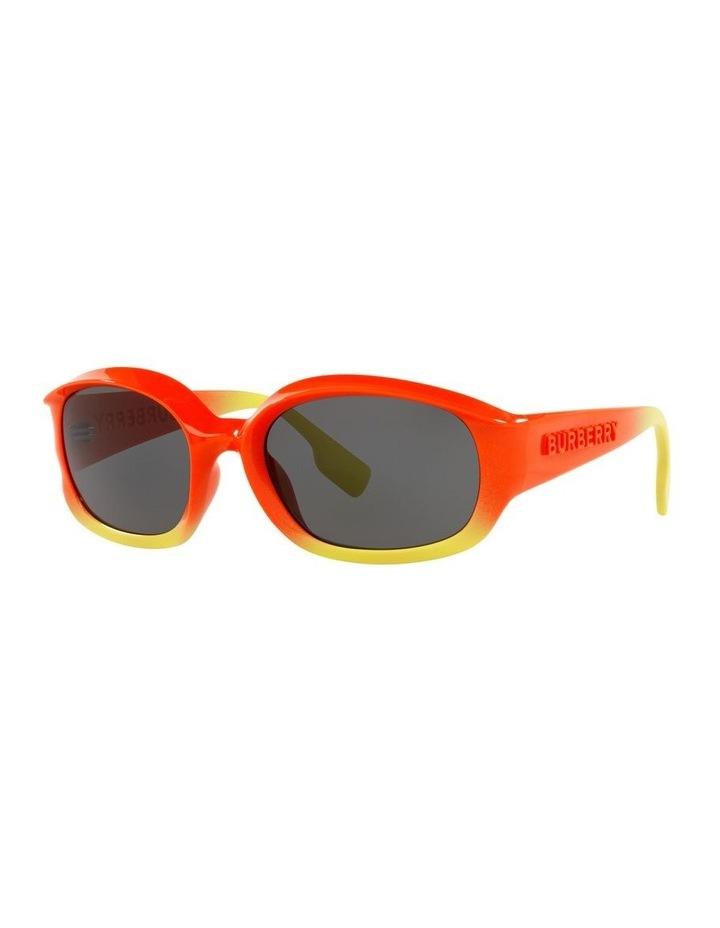0BE4338 Milton 1535457002 Sunglasses image 1