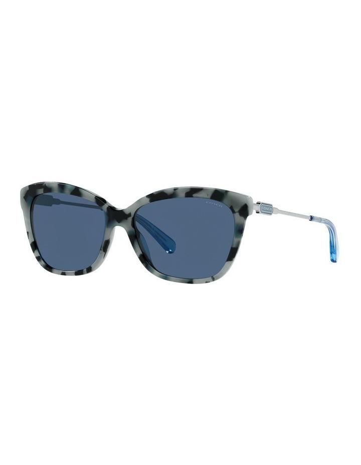 0HC8305F L1160 1534756005 Sunglasses image 1