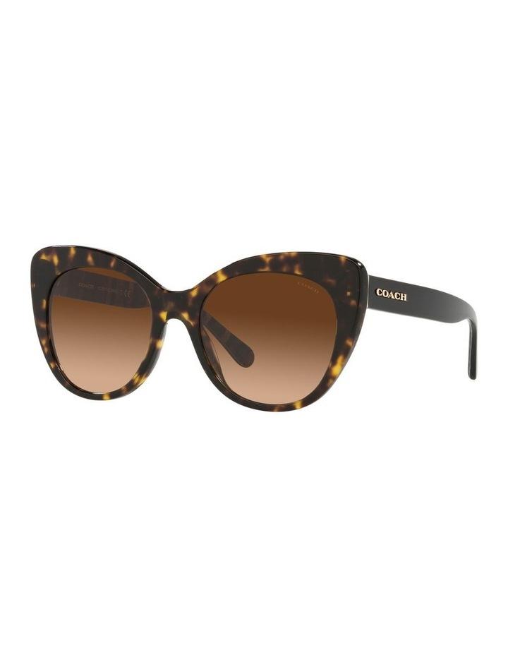 Tortoise Cat Eye Sunglasses 0HC8317 C3448 image 1