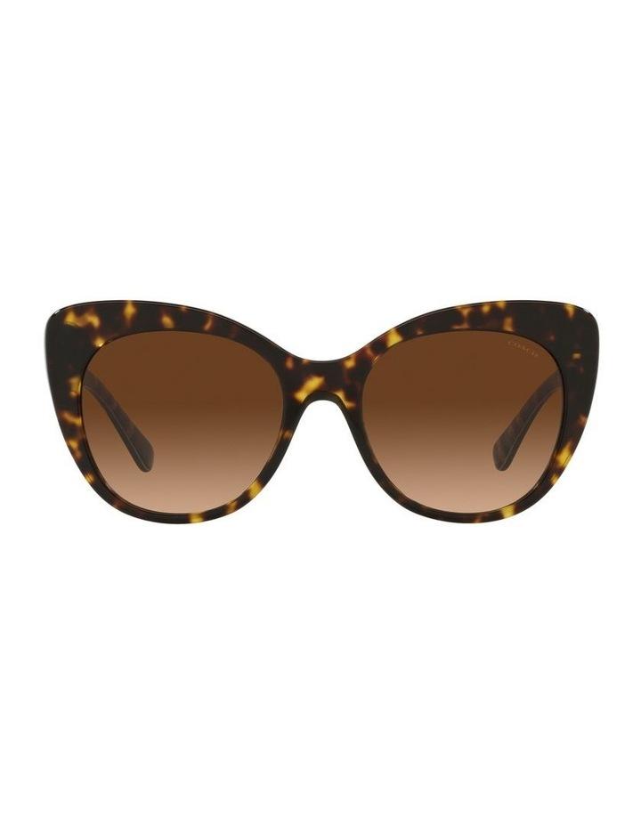 Tortoise Cat Eye Sunglasses 0HC8317 C3448 image 2