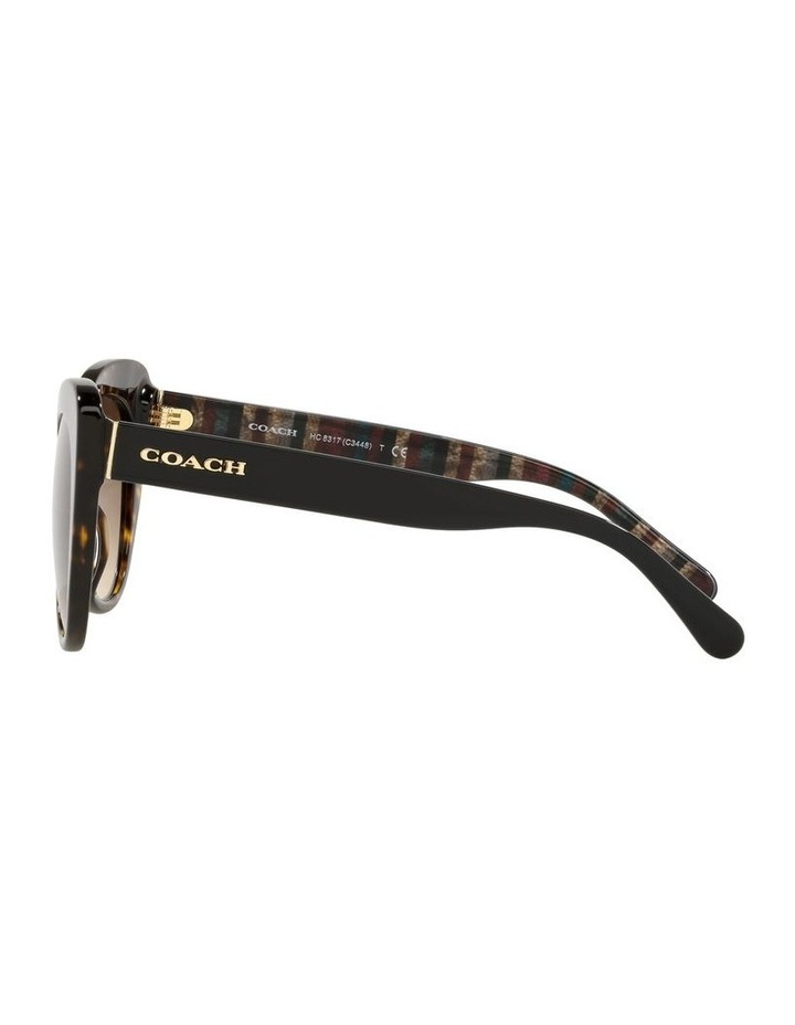 Tortoise Cat Eye Sunglasses 0HC8317 C3448 image 4