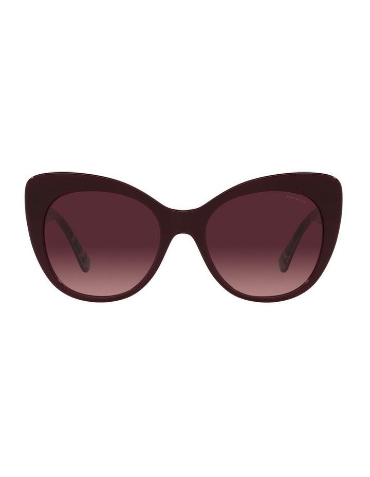 Red Burgundy Cat Eye Sunglasses 0HC8317 C3448 image 2