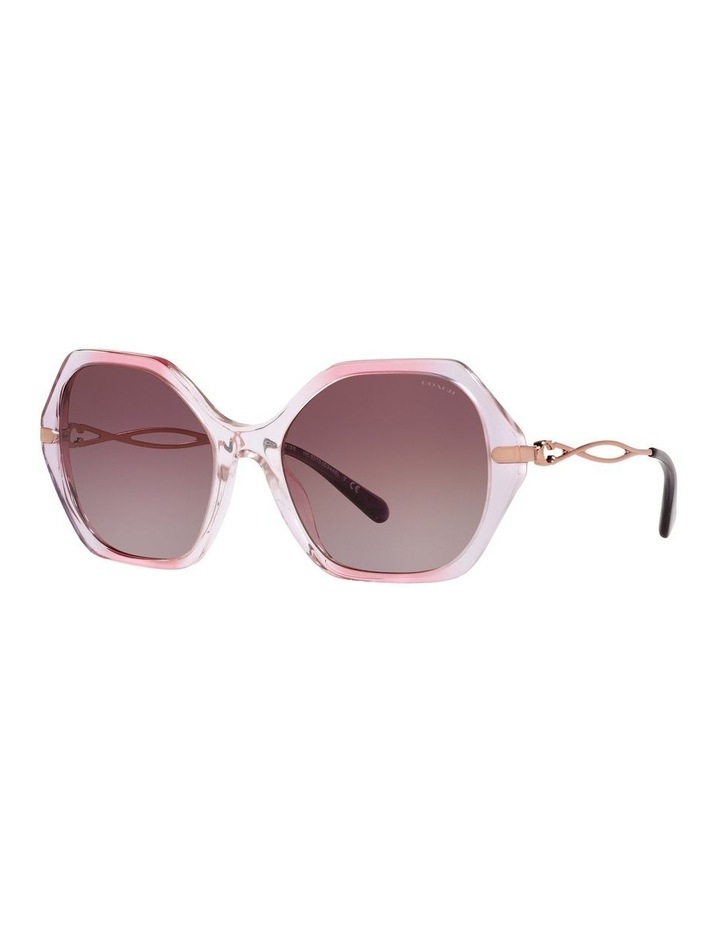 0HC8315 C3445 1534766001 Sunglasses image 1