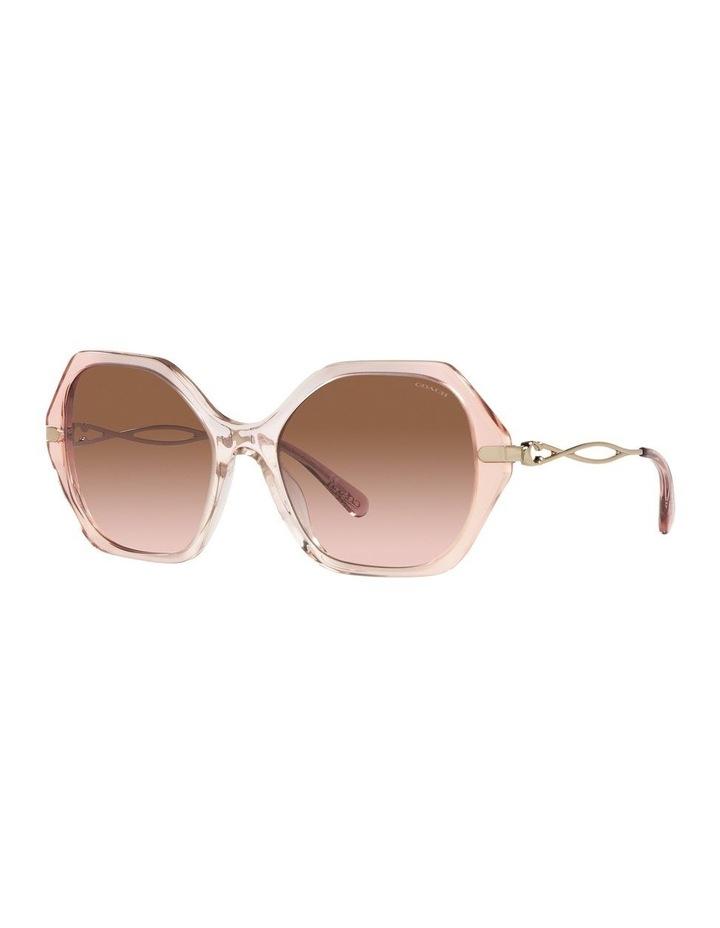 0HC8315 C3445 1534766005 Sunglasses image 1