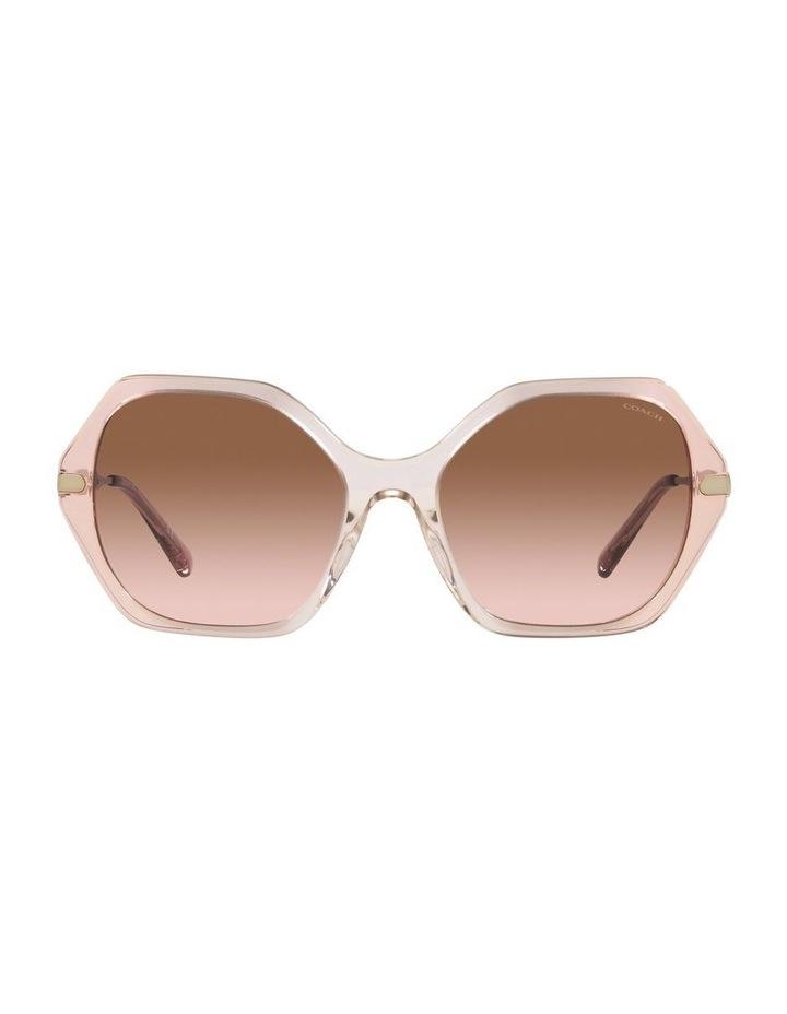 0HC8315 C3445 1534766005 Sunglasses image 2