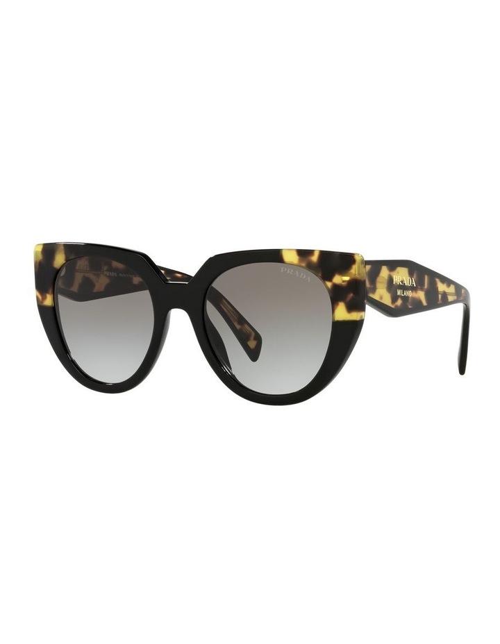 Black Cat Eye Sunglasses 0PR 14WSF image 1