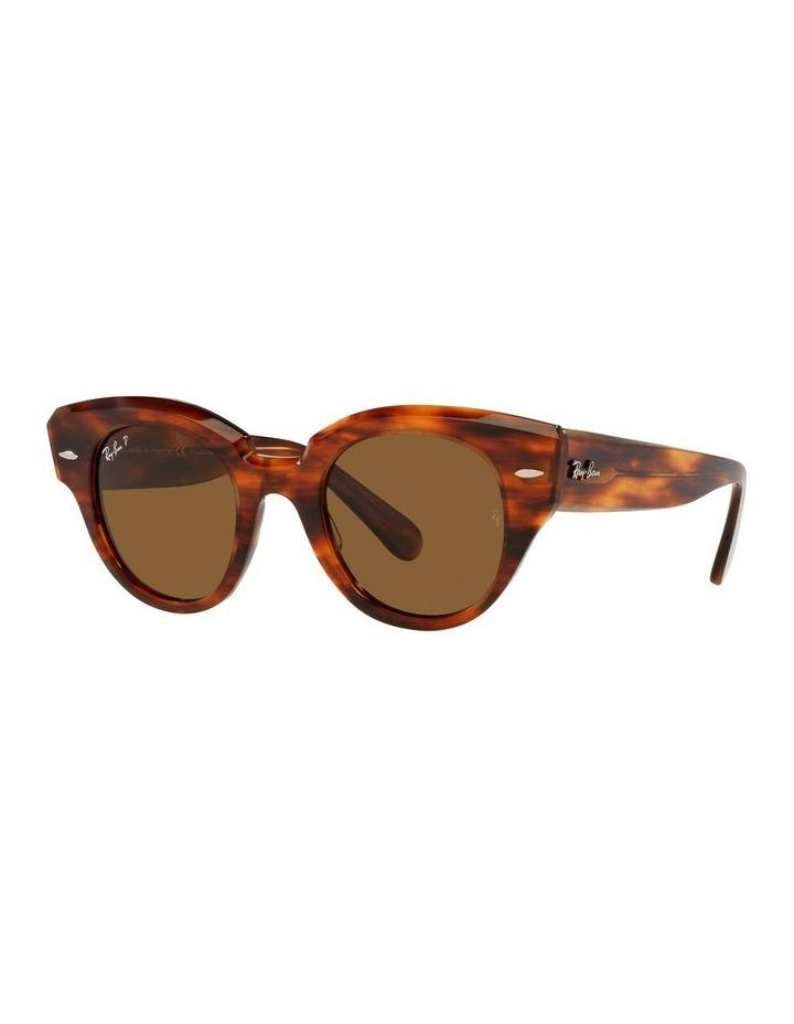 0RB2192 Roundabout 1535281005 Polarised Sunglasses image 1